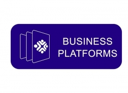 72353- Business platforms